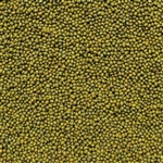 Mung Bean Sprouting Seed ORGANIC - 4oz