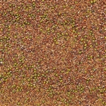 Sandwich Blend Sprouting Seed ORGANIC - 4oz