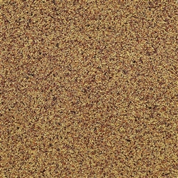 Red Clover Sprouting Seed ORGANIC - 4oz