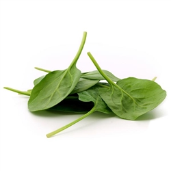 "Spinach 1"" Leaf FREEZE DRIED BULK"