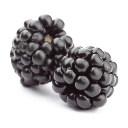 Blackberry Whole FREEZE DRIED BULK