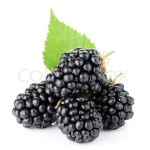 Blackberry Halves FREEZE DRIED BULK ORGANIC