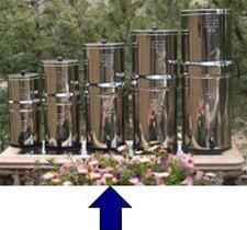 Berkey Royal Water Purifier