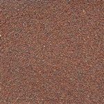 Broccoli Sprouting Seed ORGANIC - 4oz